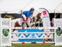 Harrison Lane NZ Speed Pony Champ 1.20 Table C Art 239