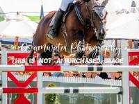 Stirrups Equestrian Olympic Cup