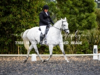Carrisa Mae Flavell – Silver Spur Mistique